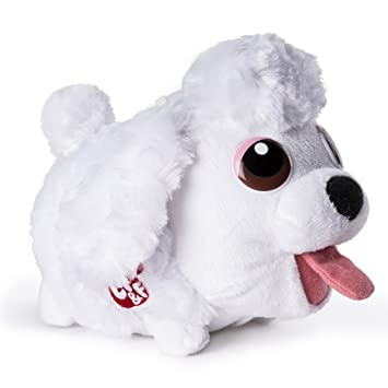Most Inspiring Poodle Chubby Adorable Dog - 81ohD-eZ2UL  Trends_607293  .jpg