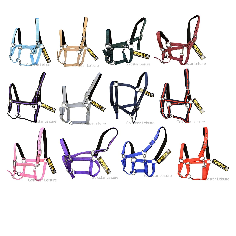 GS Equestrian Products Collier Shetland T/ête rembourr/é/ /Bleu Marine