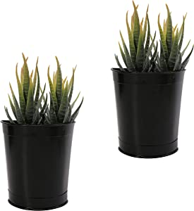 4 Inch Wall Mounted Planter Metal Hanging Plant Holder Decorative Wall Vase Planters for Succulents, Indoor Home Wall Decor,Set of 2, Black