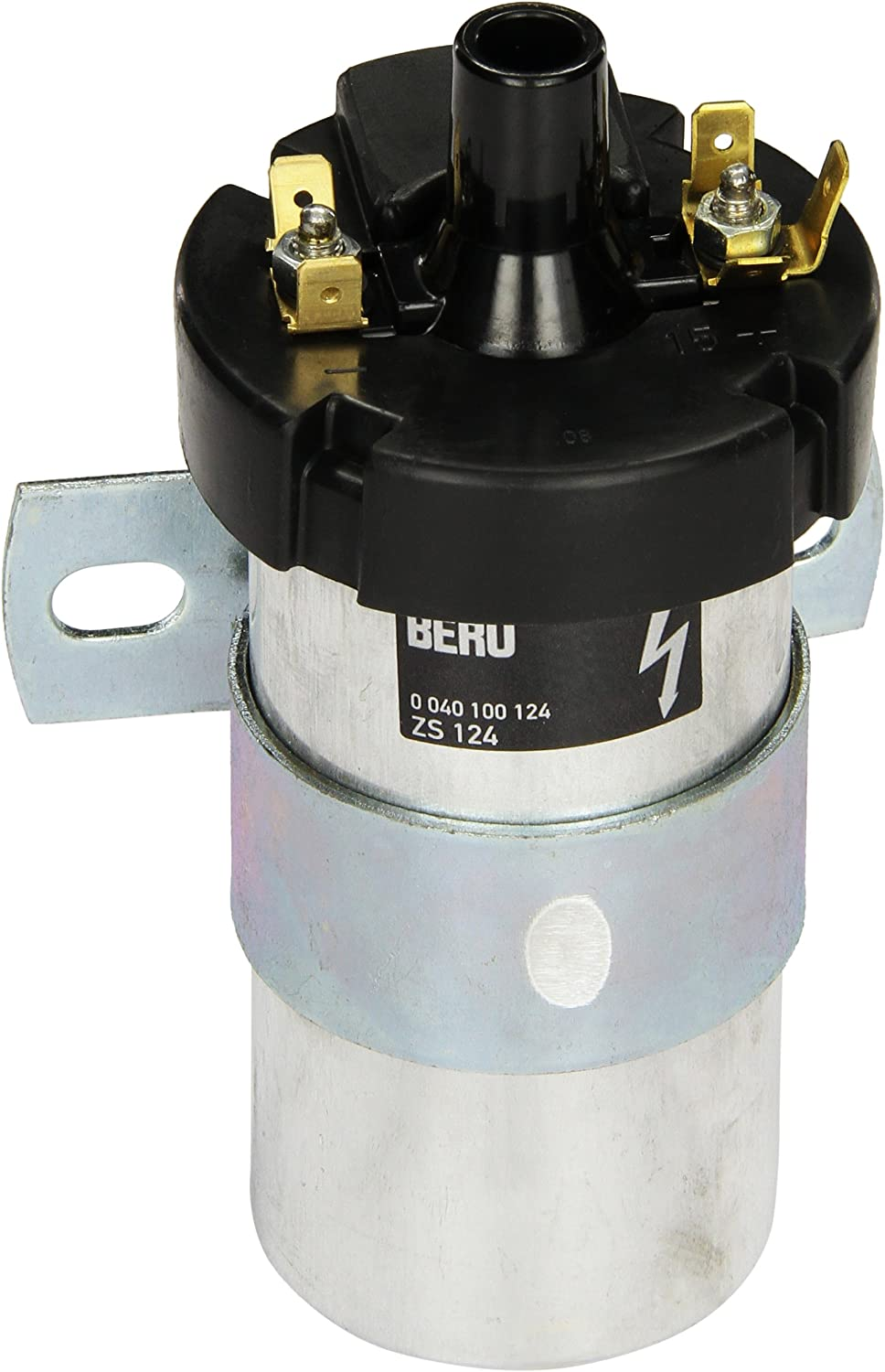 Beru AG ZS041 Ignition and Heating System