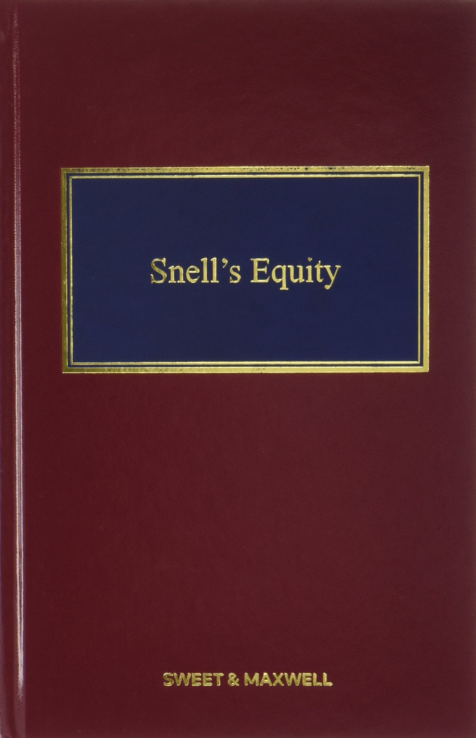 Download Snell's Equity pdf