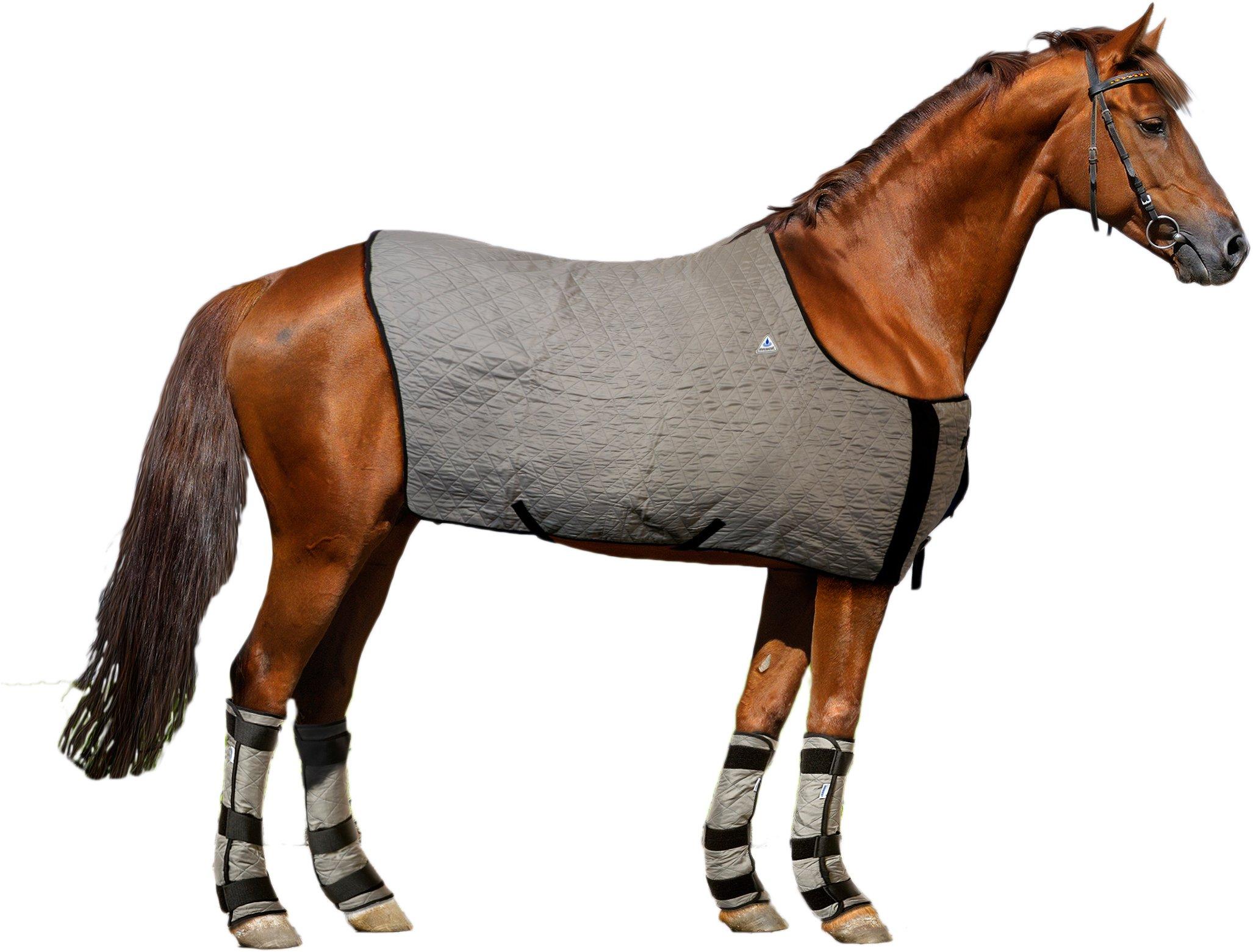 HyperKewl Evaporative Cooling Horse Blanket, Large, Silver