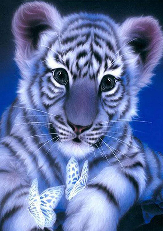 5D Full Drill Diamond Painting Art Craft Snow White Cat Cross Craft Leisure