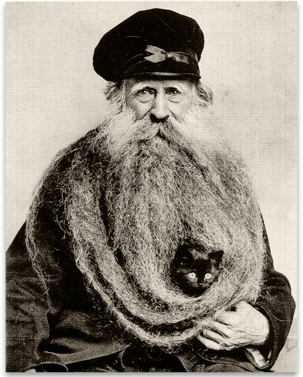 Lone Star Art Kitten Hiding in Old Mans Giant Beard Bizarre Strange Weird Vintage Photo - 11x14 Unframed Print - Perfect Vintage Home Decor