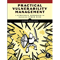Practical Vulnerability Management: A Strategic Approach to Managing Cyber Risk