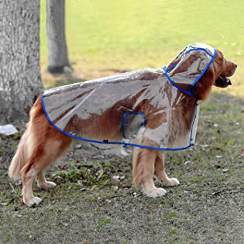 regencape hund