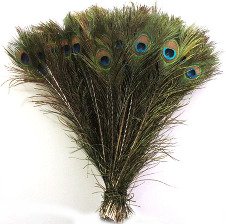 G/én/érique 50P Mode Naturel Teint Plumes de Paon Bricolage f/ête de Mariage Maison Plumes de d/écoration de Cheveux Pourpre