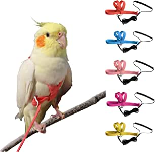 VANTRONIK Adjustable Bird Harness Leash Kit,OutdoorFlying Training Rope for Small Parrots(Random Color)