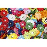 "(100) in a Bag Soft Mini Daisy Flowers~2"" 2 Inch Small Flowers Great for Craft Projects"