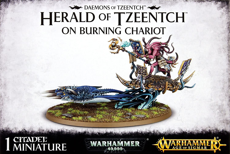 Warhammer 40K - Age of Sigmar Daemons of Tzeentch Herald of Tzeentch on Burning Chariot