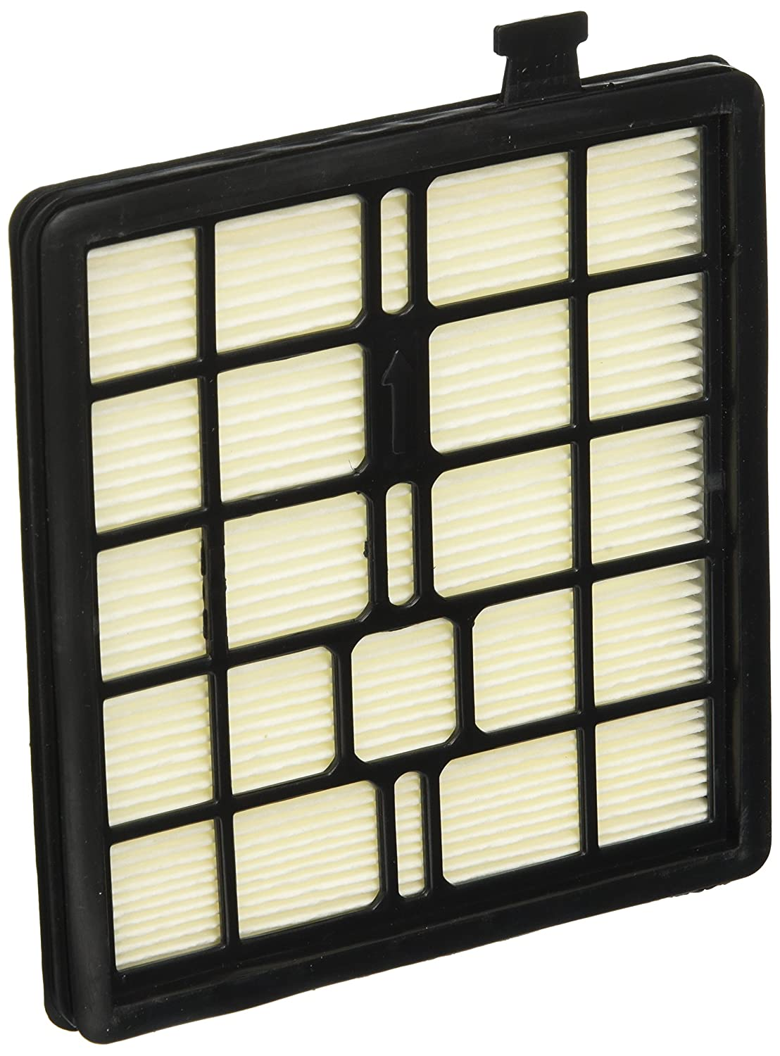 Royal Dirt Devil 2KQ0107000 Filter F45 SD40000//SD40010 Behind Dirt Cup Pleatd