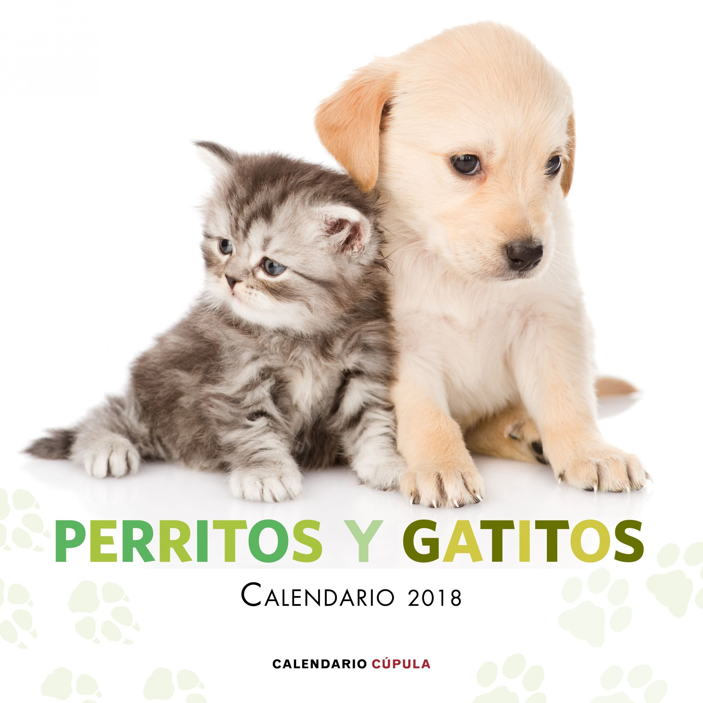 Calendario Perritos y gatitos 2018 Calendarios y agendas: Amazon.es: AA. VV.: Libros