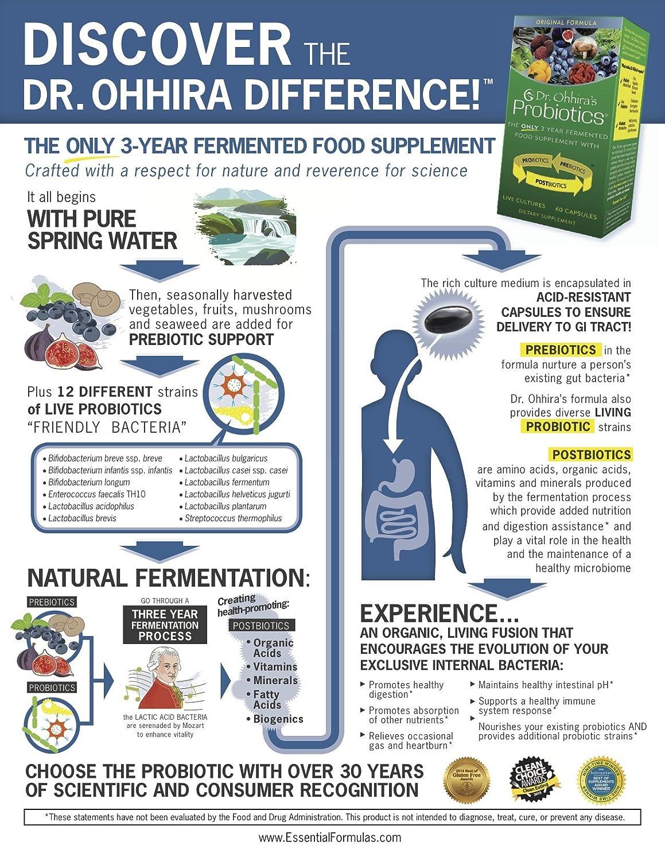 Amazon Com Dr Ohhira S Probiotics Original Formula 60 Capsules