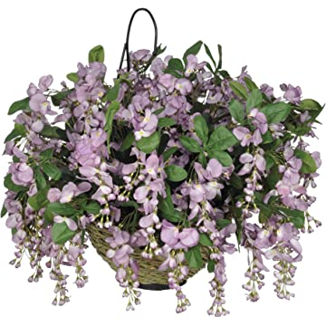 reliable House of Silk Flowers Wisteria