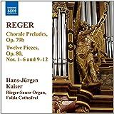 Reger: Orgelwerke Vol.11