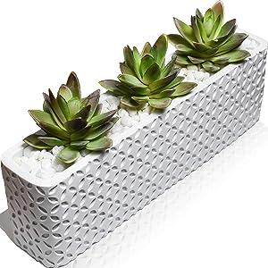 Seeko Artificial Succulents - 13 Inch Long Succulent Planter with Included Artificial Succulent Plants