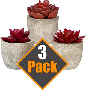 3 Piece Red Artificial Succulent Plants With Cement-Like Pots Realistic Greenery Mini Potted Faux Plant Arrangements | Home Décor, Office, Dorm Room, Bathroom or Restroom, Kitchen Table Centerpieces