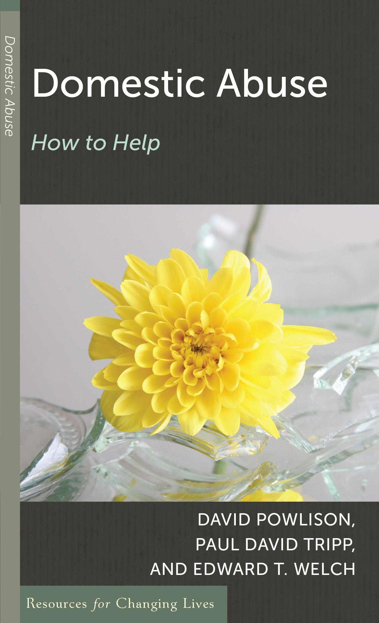 Domestic Abuse: How to Help (Resources for Changing Lives) pdf