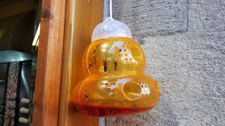 Soddyenergy Wasp Repellent Hornet Trap Bee Catcher 1 Pack
