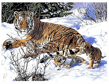 Obella Malen Nach Zahlen Kits Schnee Tiger Mutter Und Tiger Baby
