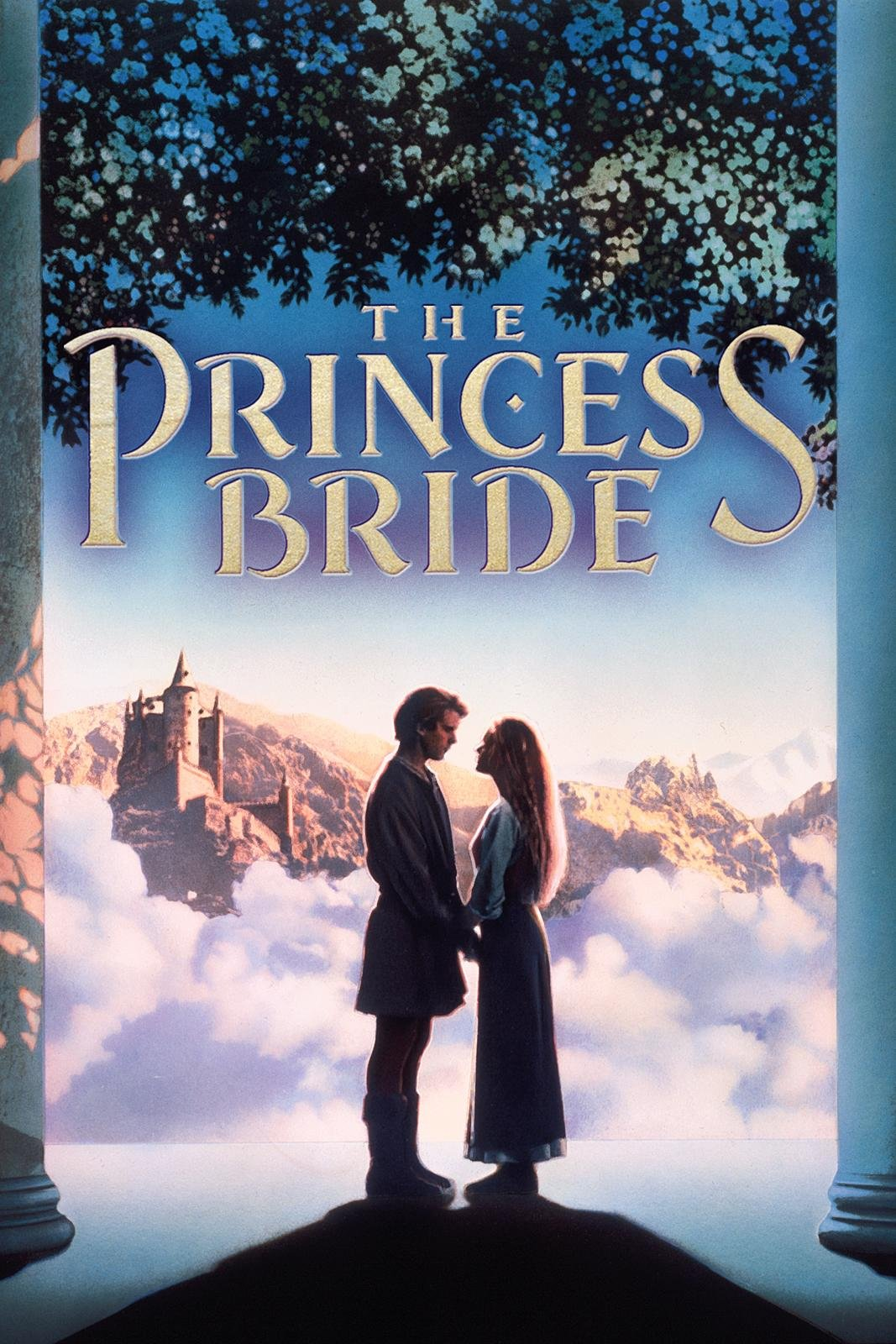 the princess bride thesis statement