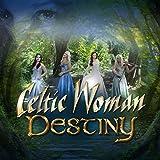 Destiny [Import allemand]