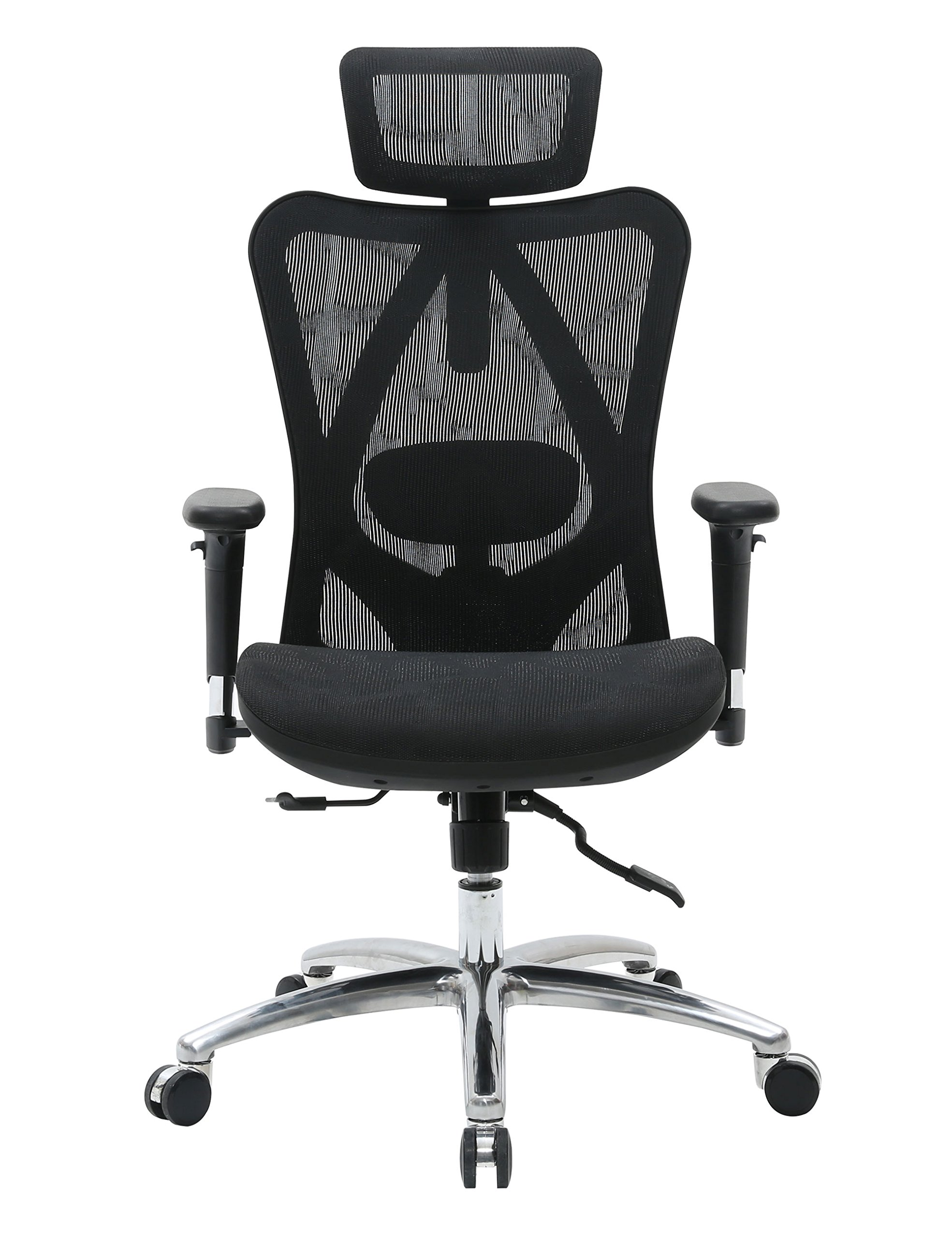 Sihoo Ergonomic Office Chair, Computer Desk Chair, 3D Adjustable High-Back, Breathable Skin-Friendly Mesh with Armrest, Lumbar Support (Black) by SIHOO