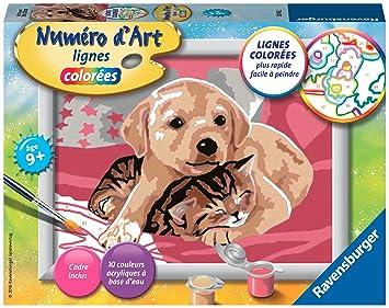 Ravensburger - 28045 - Número de Arte pequeño Formato - como Perro y Gato: Amazon.es: Juguetes y juegos