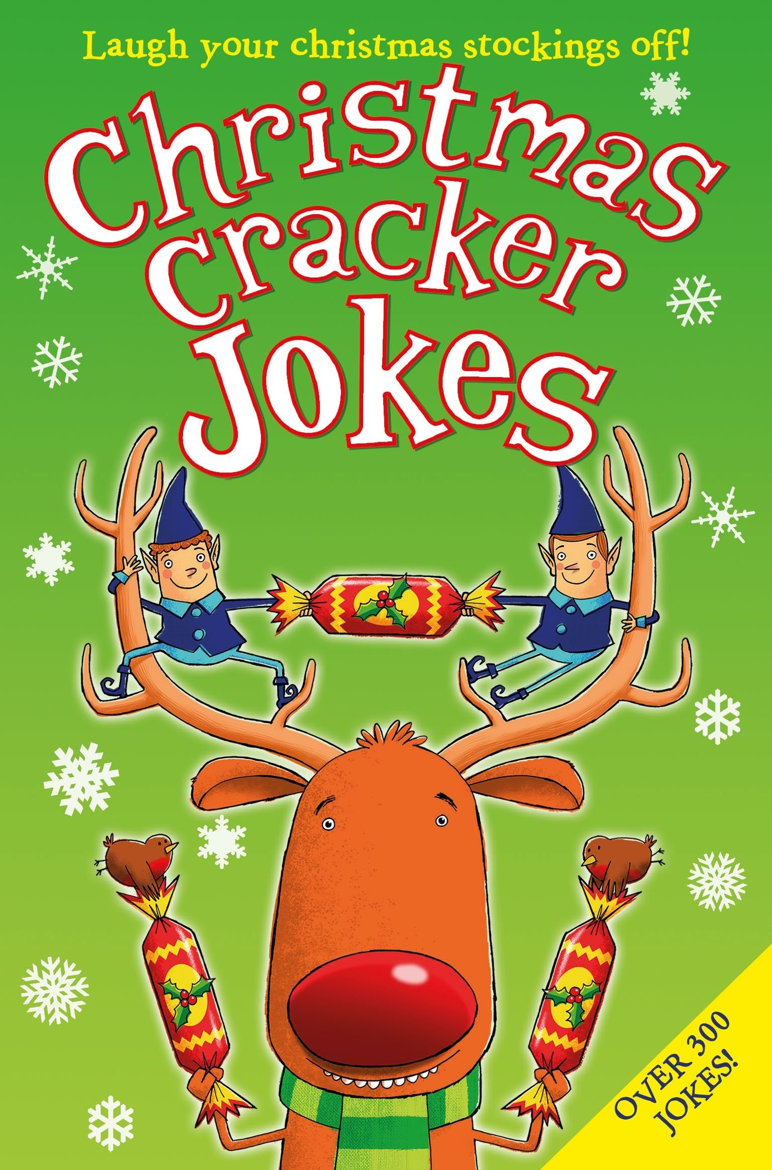 Christmas Cracker Jokes: Amazon.co.uk: Amanda Li: 9781447278009: Books