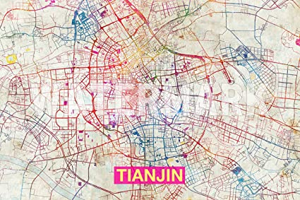 Amazon introspective chameleon tianjin china artistic modern introspective chameleon tianjin china artistic modern map original photo poster print perfect gumiabroncs Image collections