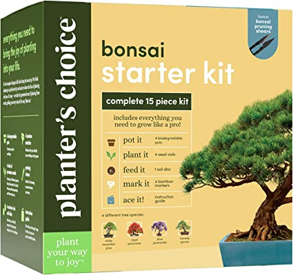 Amazon Com Bonsai Starter Kit The Complete Growing Kit To Easily Grow 4 Bonsai Trees From Seed Comprehensive Guide Bamboo Plant Markers Unusual Gardening Gifts Ideas For Women