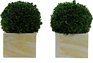 Admired By Nature Tabletop Faux Preserved Artificial Boxwood Ball Plant, Medium-2pcs