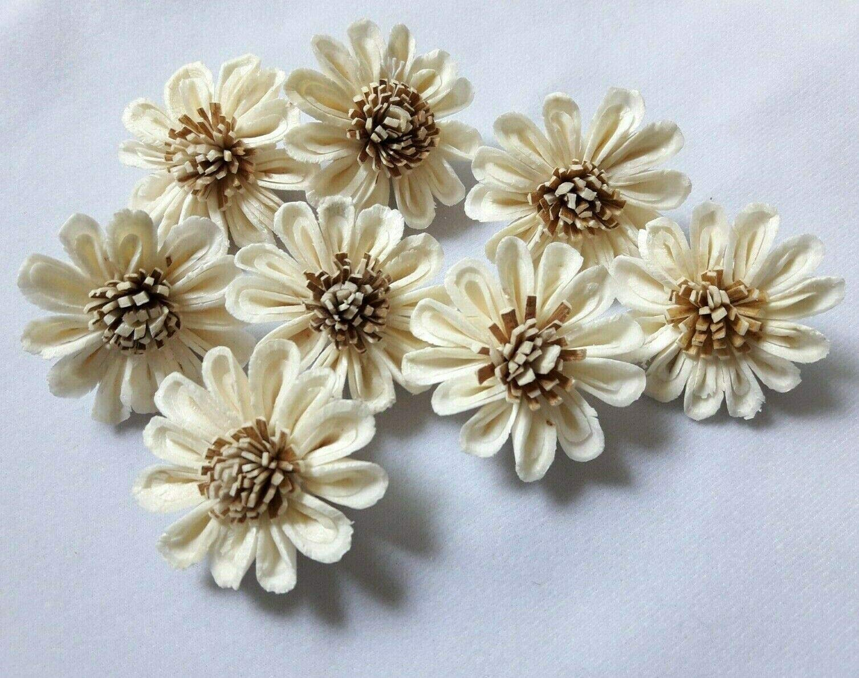Jikkolumlukka 50 pcs. Sunflowers Sola Balsa Wood Diffuser Craft Decor Home Fragrance Bouquet Wedding DIY Gift 5Cm by Jikkolumlukka
