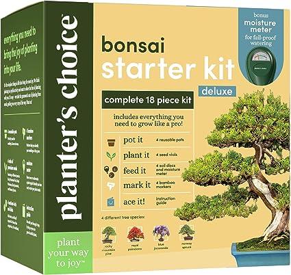 Amazon Com Bonsai Tree Growing Kit Grow 4 Indoor Bonsai Trees Plant A Garden From Seeds Unique Gardening Gifts For Women Men Gardeners Unusual Gift Ideas