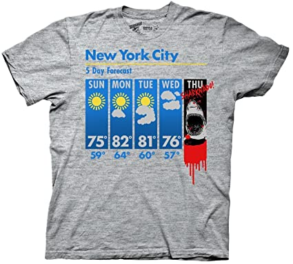 Long Term Weather Forecast New York City THE APPRECIATION OF