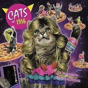 ACCO Brands - Calendario de pared para gatos de 1986 2019, varios colores: Amazon.es: Oficina y papelería