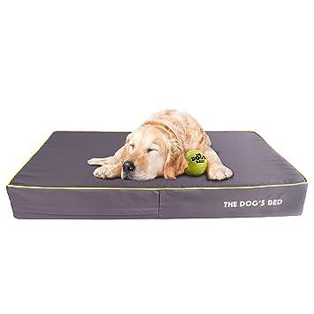The Dogs Bed - Cama de perro ortopédica, impermeable, viscoelástica, 5 tamaños/7 colores. Alivia la artritis ...