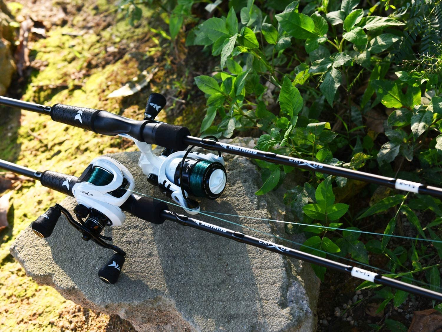 What Makes a Great Baitcaster for Beginners?