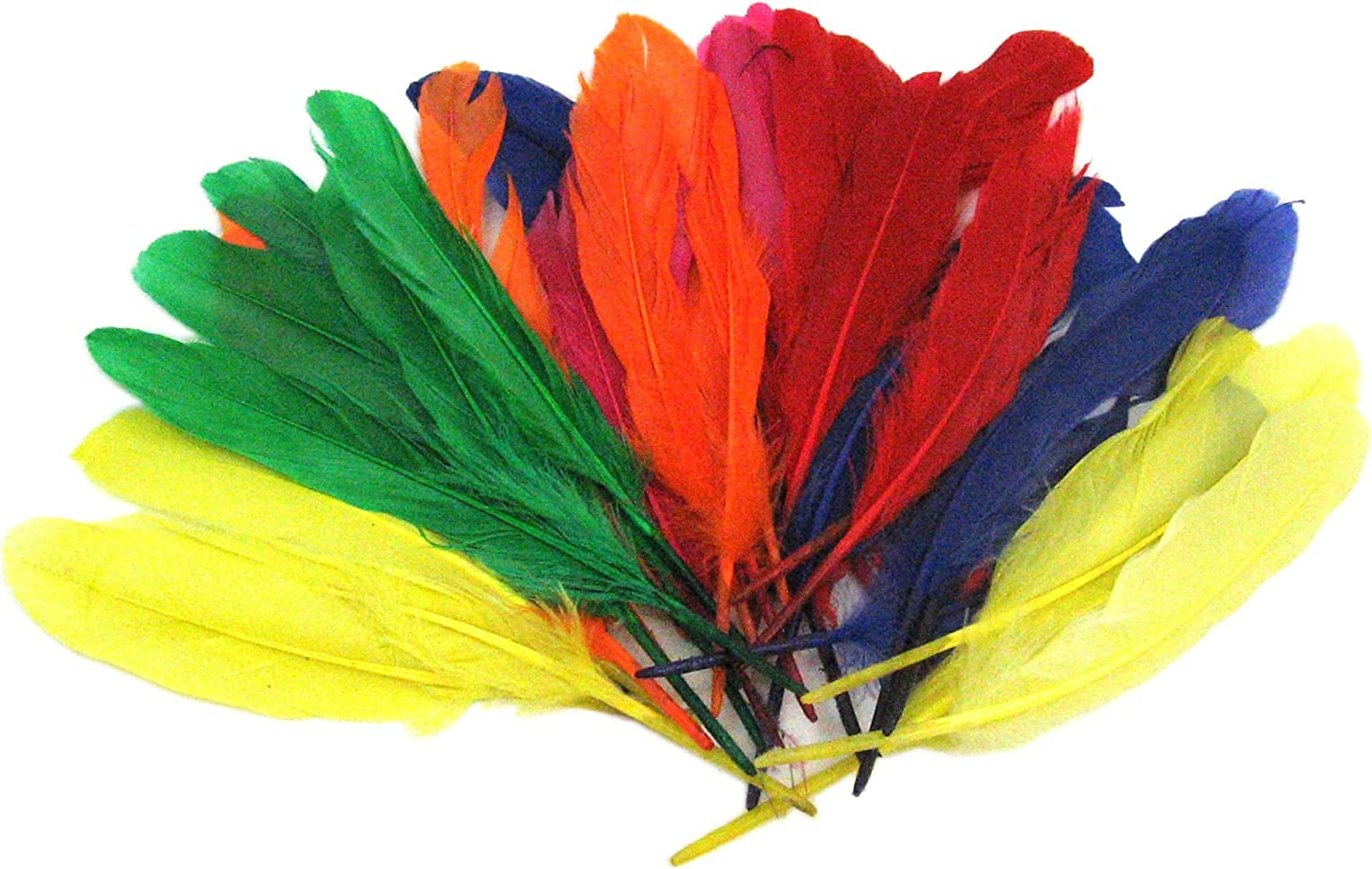 Multi Coloured Feathers Large /& Small Fluffy Childrens Kids Arts and Craft