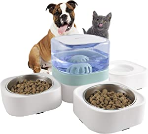 Kimpets Cat Food and Water Bowl Set, 3-in-1 Detachable Cat Dog bowl, No Plug in Elevated Green Cat Bowl with 63.5 oz, Raised Dog&Cat Bowl with 2 Stainless Steel Cat Bowls, Cat Food Bowl for Indoor Cat