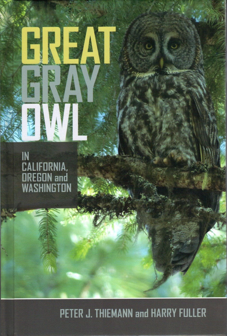 Great Gray Owl Of California, Oregon And Washington: Peter J Thiemann,  Harry Fuller: 9780692401965: Amazon.com: Books