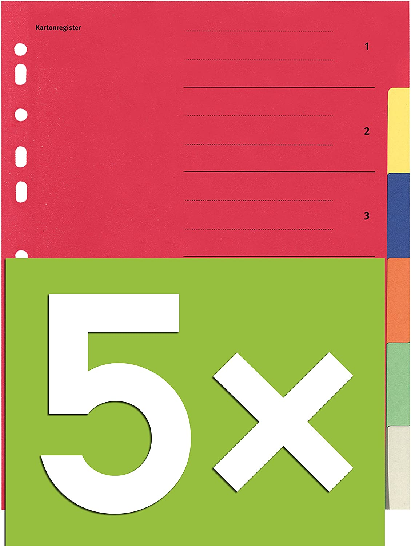 5-teilig | 5er Pack Falken Karton-Register f/ür DIN A4 24 x 29,7 cm volle H/öhe mit Organisationsdruck