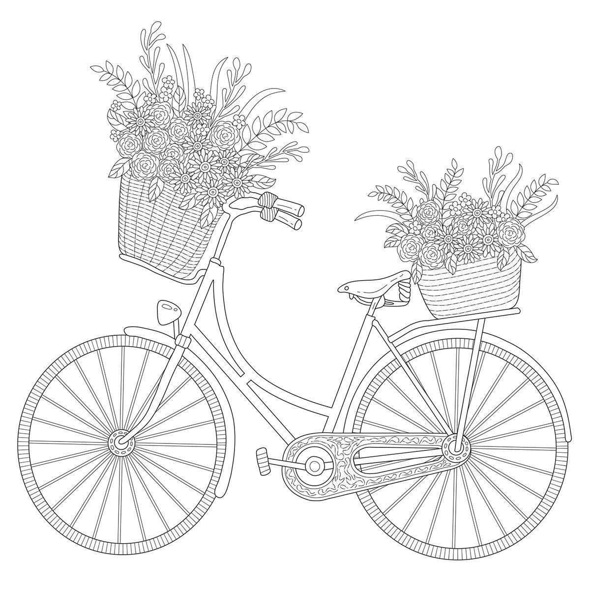 Kaisercraft Bicycle Kaisercolour Gift Card with Envelope, 6