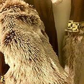 Amazon.com: Disfraces de California de la mujer besos ...