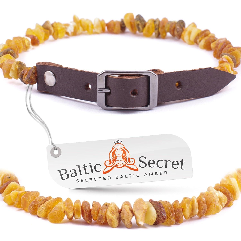 Baltic Secret Bernsteinkette für Hund & Katze/100% Echter Baltischer Bernstein/Zeckenschutz Hund/Bernsteinkette Hund PNL55-60-MLT-brown-BS03.15