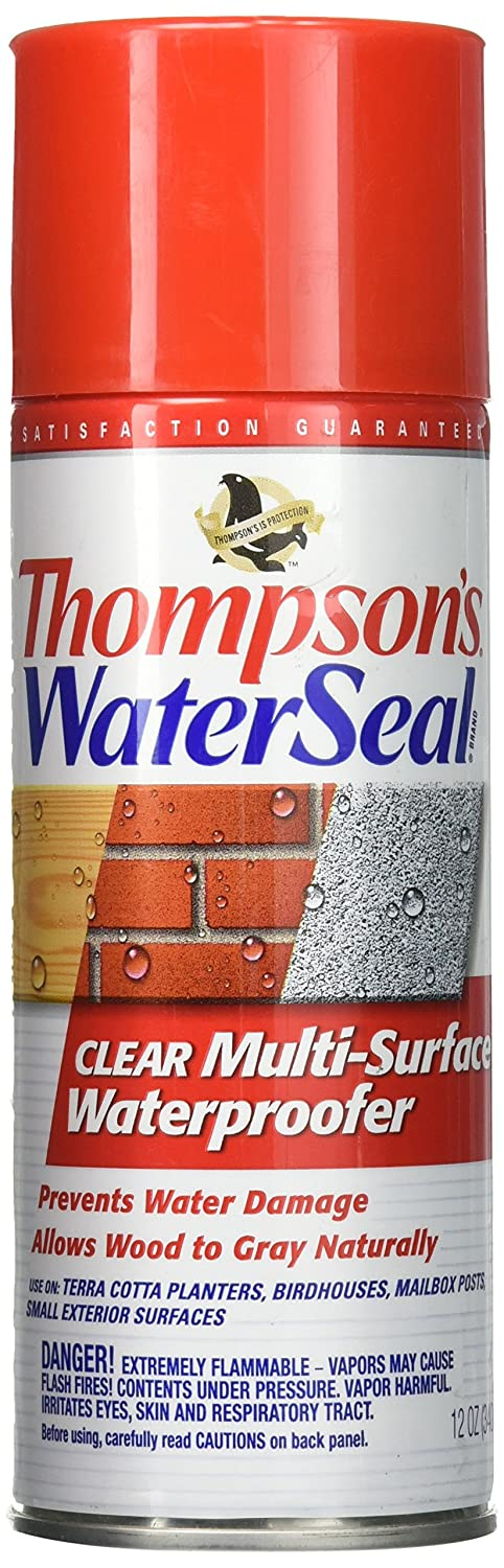 Buy Thompson's Water Sealer at Amazon