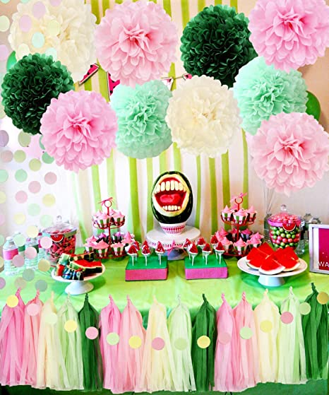 Watermelon Birthday Party Supplies Watermelon Theme Decorations Spring Color Baby Shower Decorations Pink Green Tisssue Pom Pom Watermelon Party