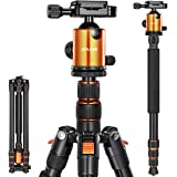 Joilcan 80-inch Tripod for Camera, Aluminum Tripod for DSLR,Monopod, Lightweight Tripod with 360 Degree Ball Head Stable for