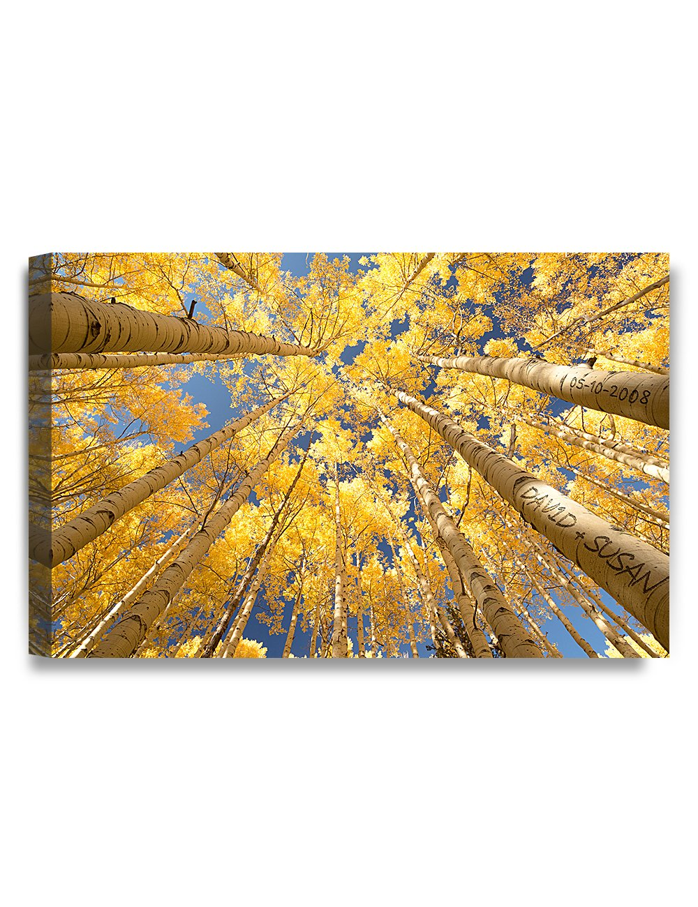 IPIC - ''Fall in Love'', Personalized Artwork with Names and Date on, Perfect love gift for Anniversary,Wedding,Birthday and Holidays. 24#P (30x20'')