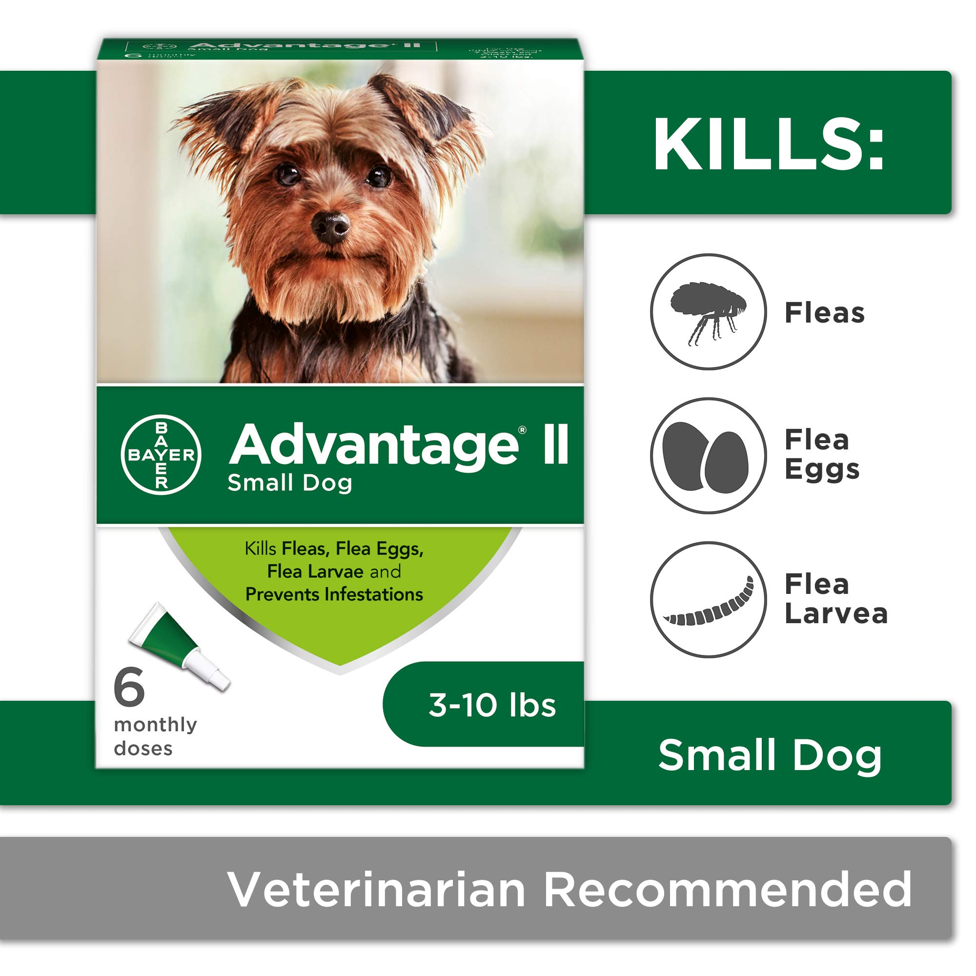 Flea and Lice Treatment for Dogs, 3-10 lb, 6 doses, Advantage II by Bayer Animal Health